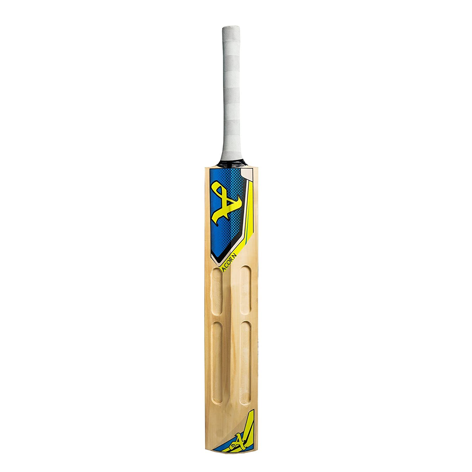 Acorn Kashmir Willow Cricket Bat (Blue)